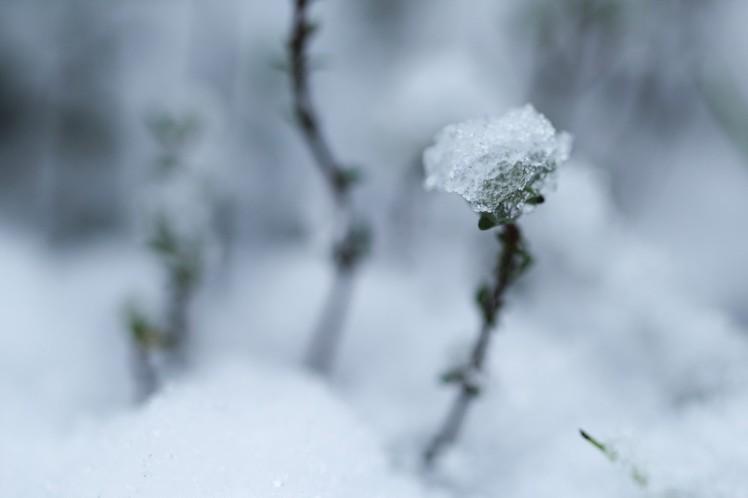 neige-73