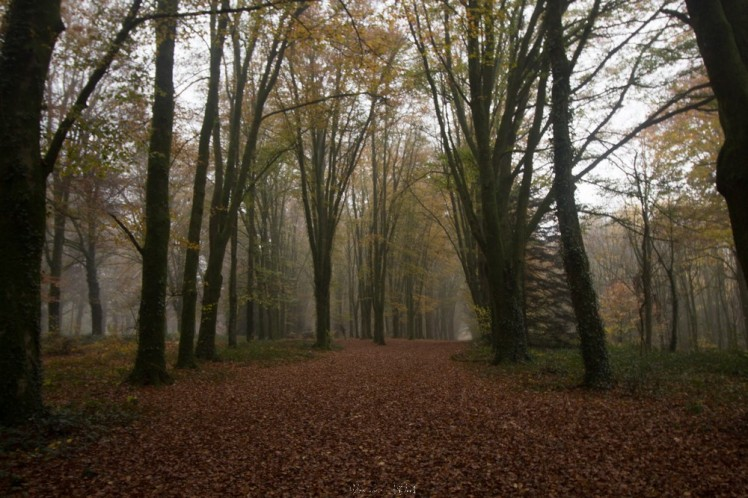 kergue automne-37